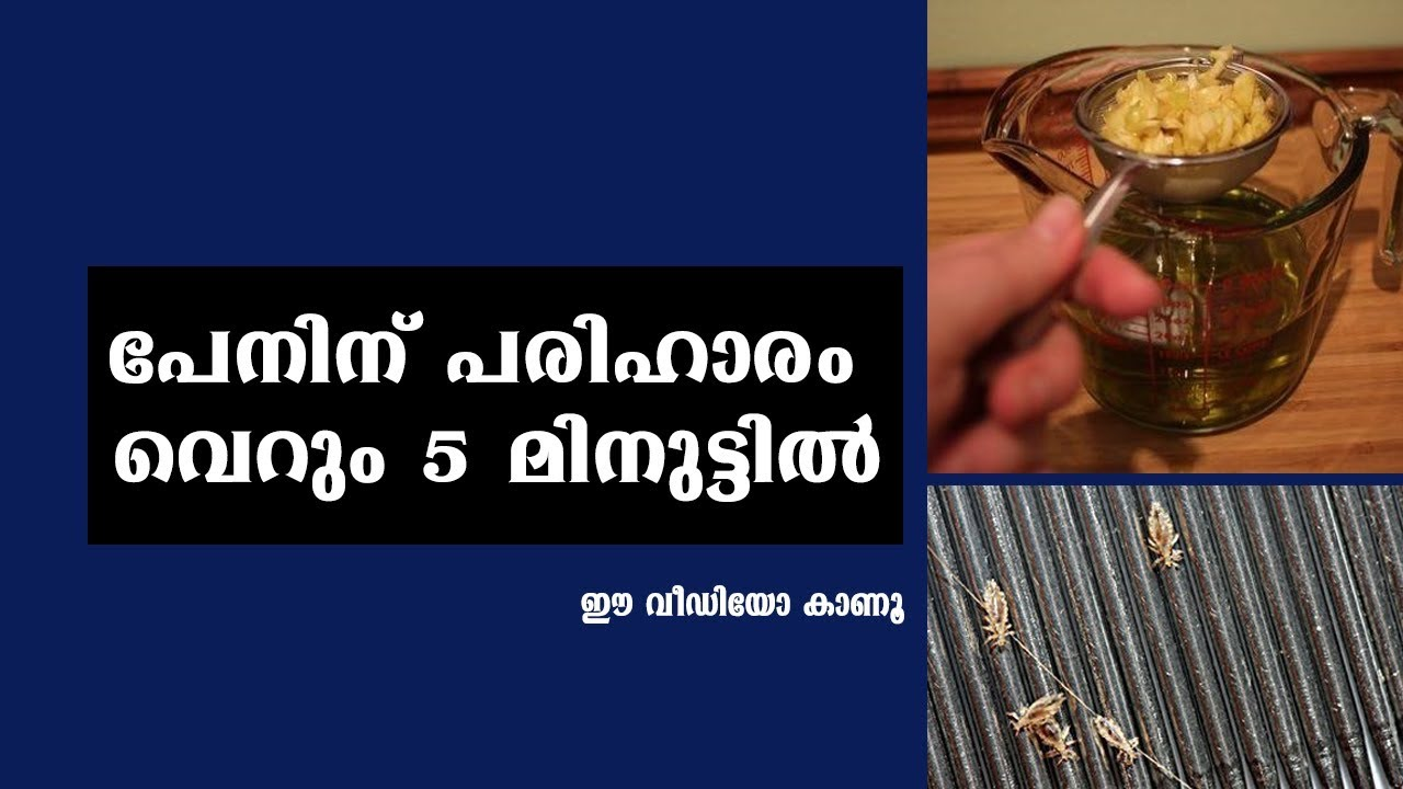 How to get rid of head lice naturally malayalam video home pictures easy tips for Can head lice transfer in swimming pools