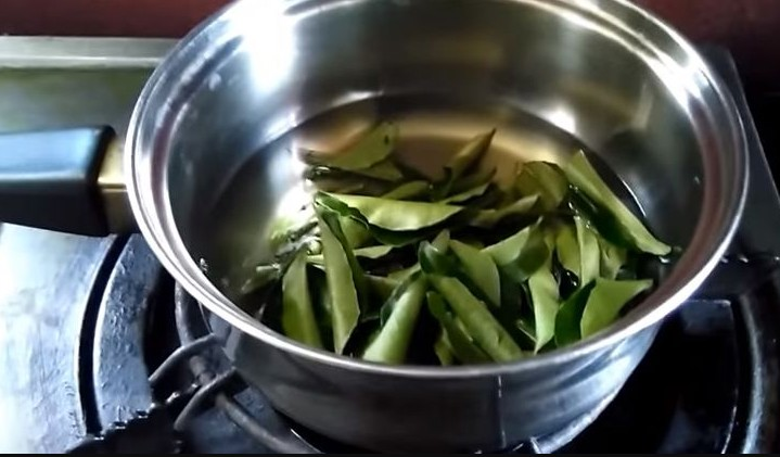 Photo of Curry Leaves Uses & Health Benefits