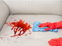 Remove a Stain from a Sofa