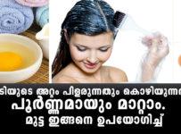 Eggs Prevent Hair Loss