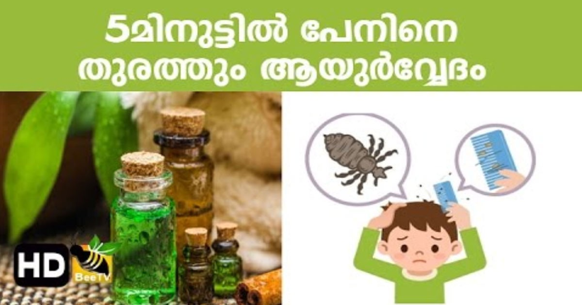 Photo of Effective Home Remedies To Get Rid Of Head Lice