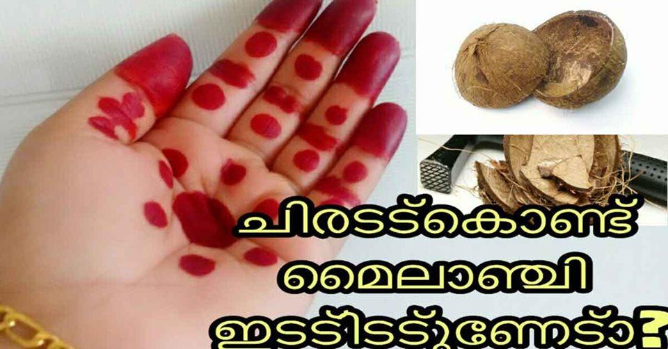 Photo of Homemade Mehandhi