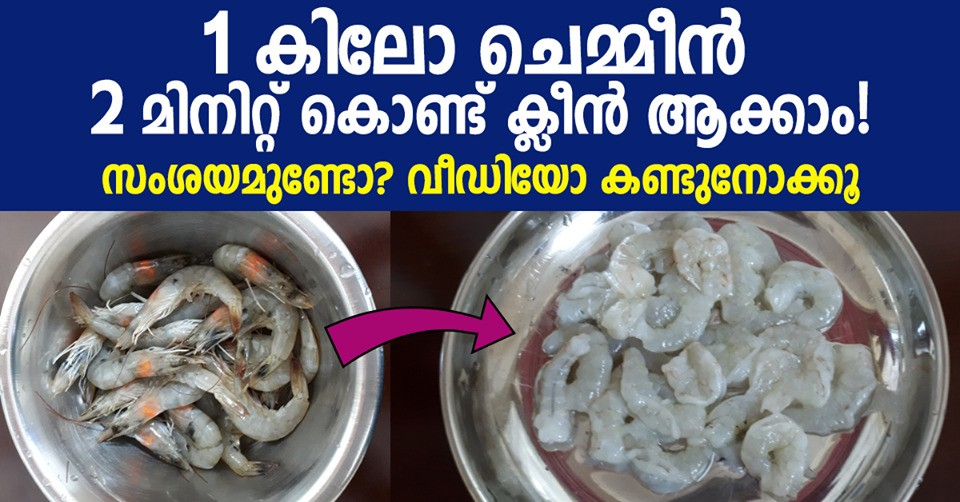 Photo of How to Clean Prawns