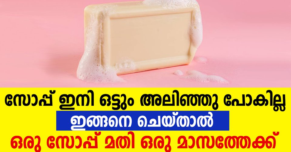 Photo of TIPS FOR STRETCHING A BAR OF SOAP