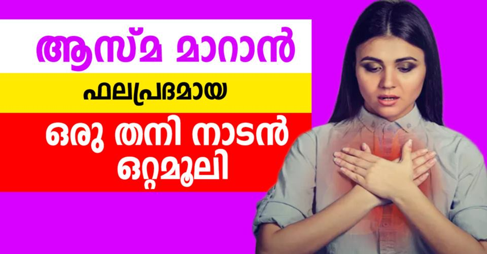 Photo of Natural Home Remedies for Asthma