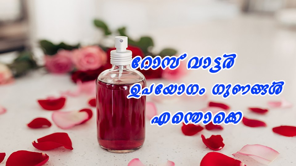 Photo of Rose Water: Benefits and Uses