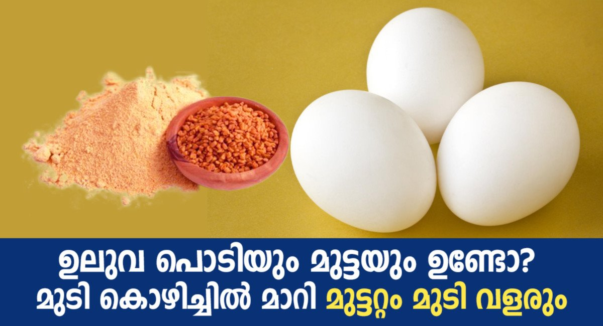 Photo of Amazing Ways To Use Eggs For Strong And Shiny Hair