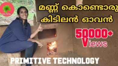 Photo of Primitive technology oven making