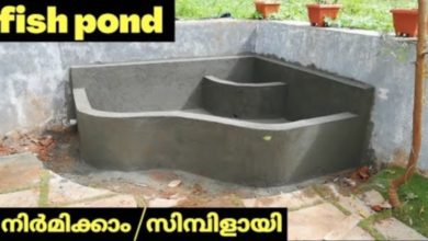 Photo of how to build fish pond simbily