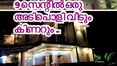 Photo of 9 cents, 25 lakhs; This house is for the middle class! Plan